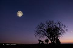Pleine lune à Fontenaille