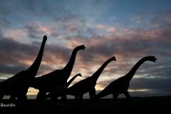Les géants du Jurassique